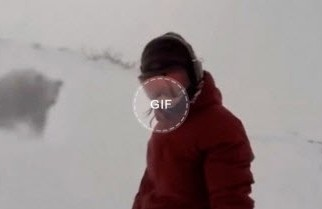 While snowboarding a girl is pursued by a bear without knowing it