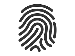 What your fingerprint says about you