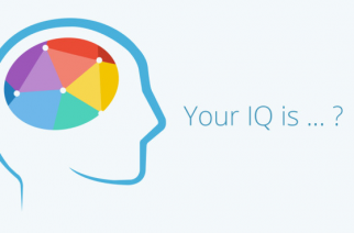 Have fun with our IQ test!